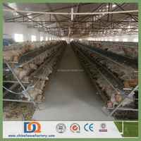 Agricultural Equipment Folding Automatic Battery Chicken Cage for Layer Fowl