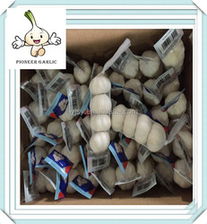 China factory directly supply pickled garlic