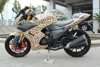 hot selling best seller beautiful design cheap racing motorcycle skyline 50cc 125cc 200cc 250cc 300cc with EEC certificate