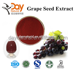Halal Grape Seed Extract manufacturer