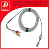 RTD PT100 ASSEMBLY with Transmitter Head Temperature Instruments