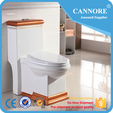 European Ceramic Siphonic One Piece Toilet For Luxury Hotel