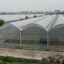 2015 new design high grade uv-protected sun resistant plastic 4mm twin wall polycarbonate greenhouse made in China