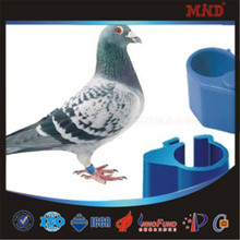 MDR11 2015 dynamic belgium racing pigeon ring tag band pigeon product