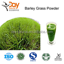 Instant Barley Grass Powder bulk