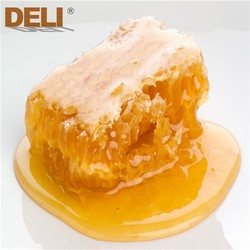 Sale the best honey comb natural honey from China