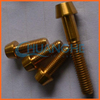 China manufacturer high quality titanium screws for motorcycle bicycle car