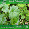 Black Cohosh Extract, Black Cohosh Powder, Black Cohosh Extract Powder