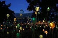 Creative fiber optic lolipop light for outdoor decoration