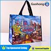 Fancy Non Woven Gift Bag/Laminated Shopping Bag