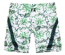 Jiangxi Province,China Manufacturer produces fashion board mens shorts competitive prices