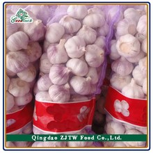 Supply competitive price hot sale chinese normal/pure fresh white garlic, nature garlic