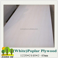 poplar plywood/ plywood for home depot