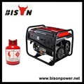 Bison( china) biogas-serie alle arten biogas-generator preis