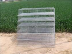 animal trap cage/folding strong wire gauge foldable wire quail cage animal cage