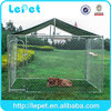 dog kennel wholesale/10x10x6 foot classic galvanized outdoor dog kennel