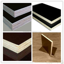 linyi shandong D/E grade poplar plywood sheet for Dubai/UAE market