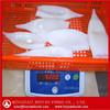 block frozen todarodes squid tube chinese origin