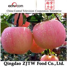 China Yantai Good Quality Best Price Fuji Apple