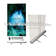 Promotion Aluminum Material Sliver 85*200CMAdvertising Roll Up Banner for Sales