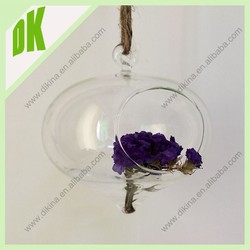 Delight Mom with a beautiful air plant terrarium# onion shape hanging small size glass ball