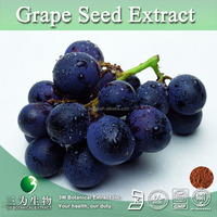 Grape Seed Plant Extract Supplement,Grape Seed Extract Polyphenols 20%~90%