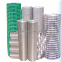 304 Stainless steel wire netting / AISI316 304 Welded wire mesh/SS wire mesh filter