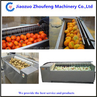 wholesale price carrot and sweet potato washing and peeling machine (skype:sophiezf3)