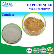 Factory Price Pure Enzyme Catalase