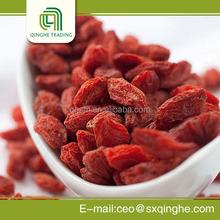 fruit conventional goji berry