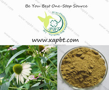 natural and nutritional echinacea 4% polyphenol 2%cichoric acid from echinacea extract