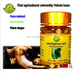 Thailand Kasetsart University Velvet Bean /Mucuna Capsule pruriens L - Dopa 99% of Man Health