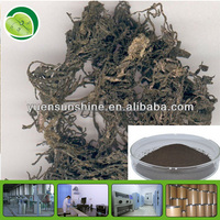 Hot Selling Brown Seaweed Extract Powder