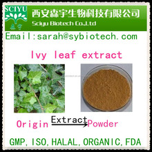 Natural Plant Ivy Leaf Extract