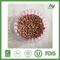raw peanuts/peanuts in shell new crop