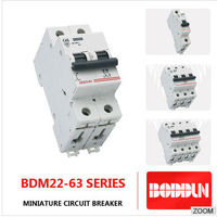 HIGH QUALITY BDM 22 WITH 63 2P MINIATURE CIRCUIT BREAKER