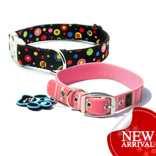 Dog collar fashion pet product cheap plain nylon dog collars