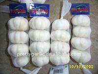 chinese fresh pure white garlic pre-packed