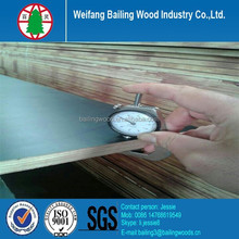 18mm concrete construction film faced plywood