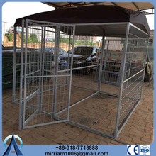 Spain Hot sale or galvanized comfortable 10x10x6 galvanized roll chain link dog cage
