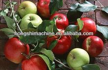 Apple juice extraction machine/fruit juicer machine/vegetable juicer machine