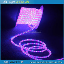 Full Color Flat 3 Lines Rainbow Rope landscape lights china