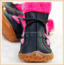 2015 dog shoes for high quality Wholesale Classic dichotomanthes bottom Dog shoes