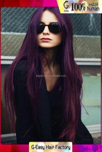 Free Shipping Philippines Virgin Hair Wigs Purple Straight Lace Front Wigs