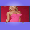 LCD & LED TV SKD CKD LCD LED television 60 inch