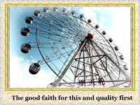 More than 10 years experience in popular children playground games ferris wheel for sale