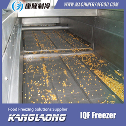 Hot Sale Green Peas fruit and vegetable freezer