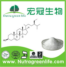 SO/GMP Soybean peptide powder Soybean extract phytocholesterol 40-95% Beta-sitosterol