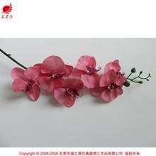 Atacado hot novos produtos para 2015 falso das flores da orquídea artificial orquídea