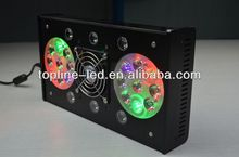 RainbowReef 3W led lights for fish and coral reef growth